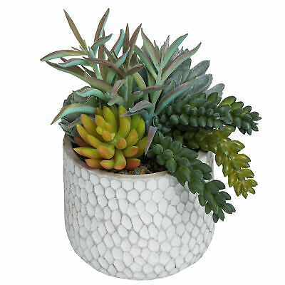 Mixed Artificial Succulent Plant Arrangement in Modern 16-Inch Gray Clay Planter