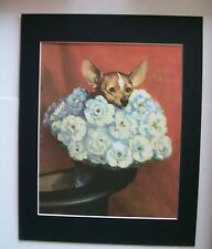 Chihuahua Dog Print Wes Dennis M Henry Flower Arrangement Bookplate 1955 Matted