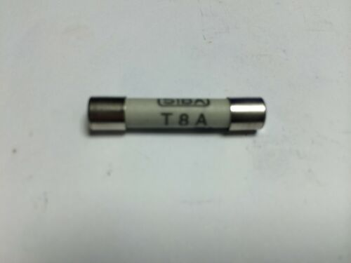 SIBA Fuse Antisurge 8A 7006565  T8A 500V typ 189140 JPSF057