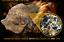 Sericho-Pallasite-Meteorite-from-Habaswein-Kenya-Africa-84-kilograms