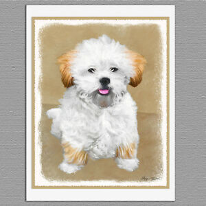 image is loading 6 lhasa apso puppy dog blank art note - Dog Greeting Cards