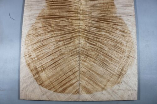 AAAAA Quilted Maple Guiatr Top//Craft Woodworking Lumber #5883-ONE AND ONLY