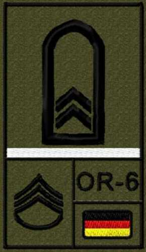 BW sargento soldado insignias espesas de la Bundeswehr gancho y lazo con alambre reservistas