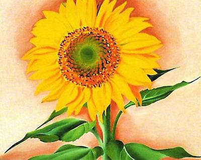 11x14 Georgia OKeeffe a Sunflower From Maggie 1937 Art ...