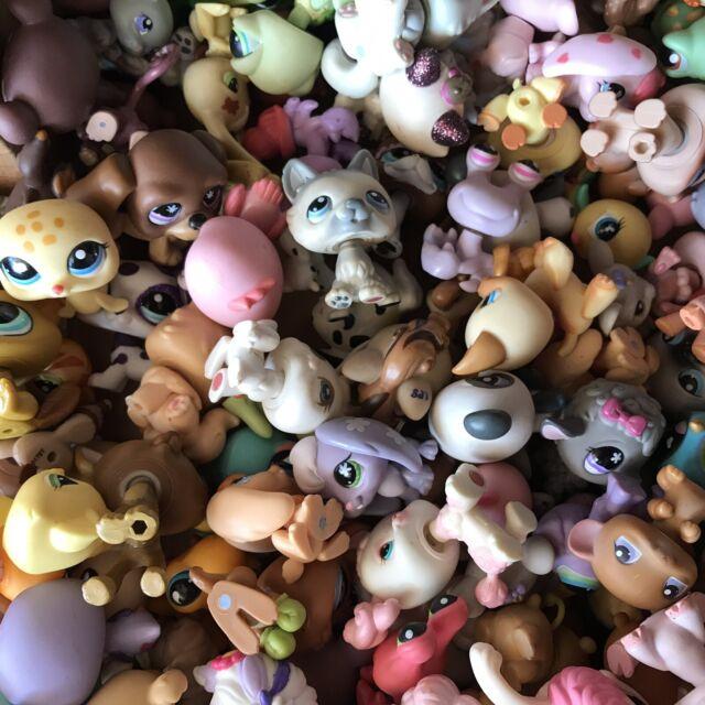 Randon 5pcs//set Rare LPS cat dog Littlest Pet Shop toy surprise KIDS GIFT