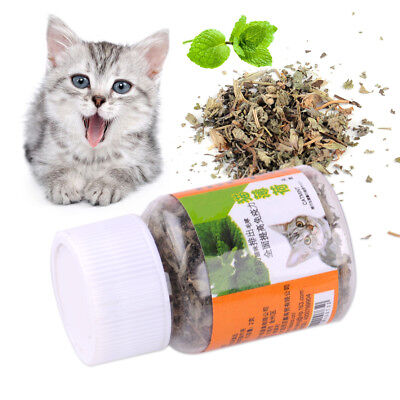 STRONG DRIED CATNIP HERB FOR CAT KITTEN TOY ORGANIC  NEPETA CATARIA X  #catnip