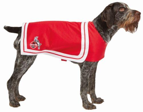 Rub 1.FC Köln Hundekostüm Hundecape Fan Karneval Fasching