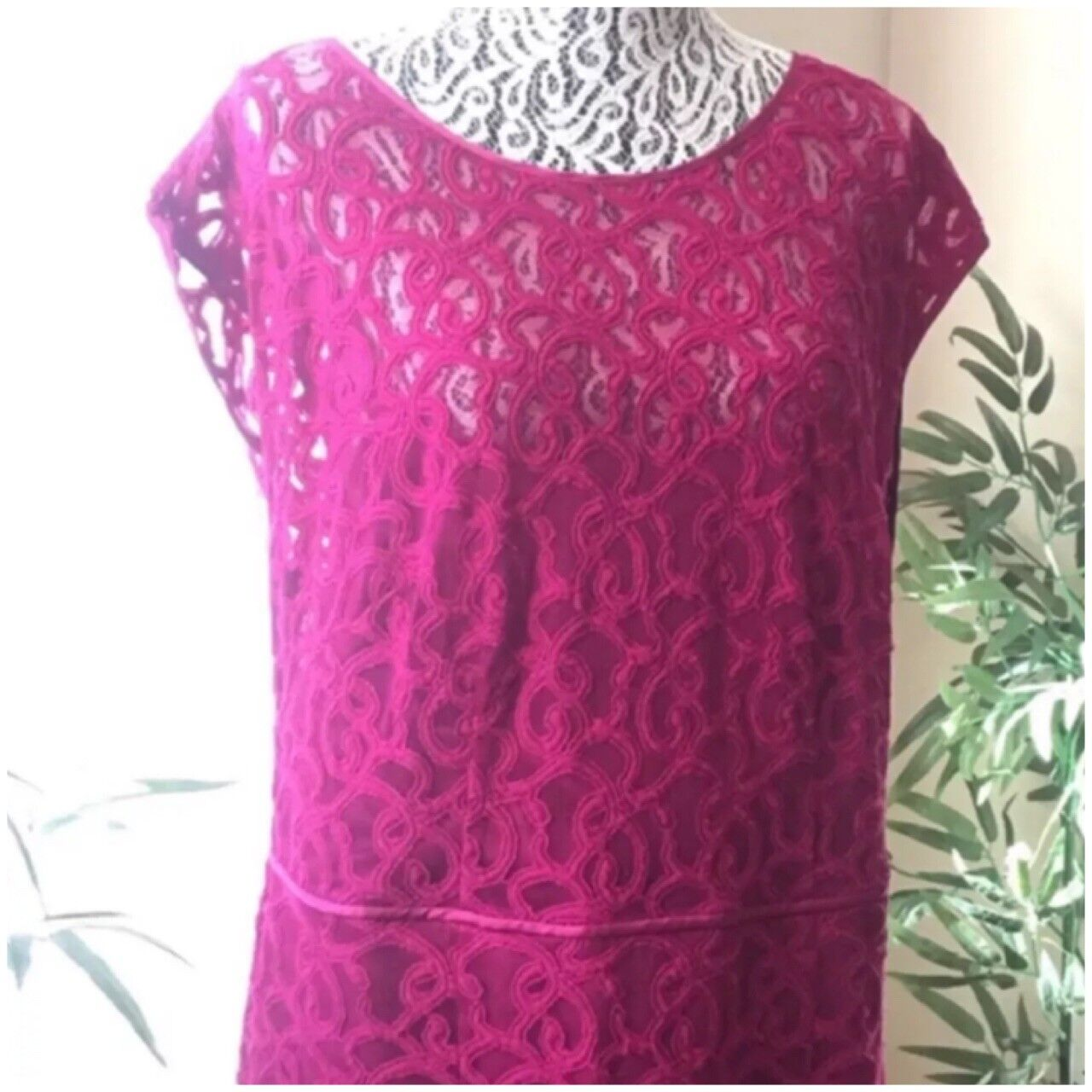 ADRIANNA PAPELL Woman Magenta Size 14W Lace Women's Plus Size Dress Pre-Owned