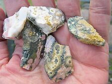 FIVE NATURAL Ocean Jasper (Orbicular Jasper)  CRYSTAL PIECES 3.5X2X.75 CMS  32g