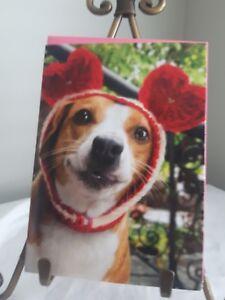 AVANTI-VALENTINES-DAY-CARD-Beagle-Dog-LOVE-heart-Ears-hat-034-FREE-HUGS-034