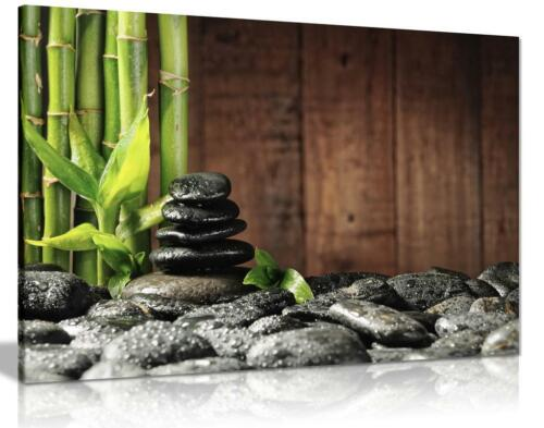 Green Spa Botanical Bamboo Black Zen Stones Canvas Wall Art Print