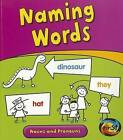 Naming Words: Nouns and Pronouns by Anita Ganeri (Paperback / softback, 2012)