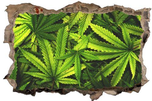 Cannabis Drug marihuanna Hemp Wall Tattoo Wall Sticker Wall Sticker d0679