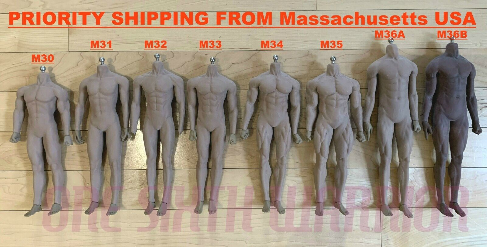 【USA PRIORITY SHIPPING】 TBLeague PHICEN 1 6 STRONG MUSCULAR Male SEAMLESS Body