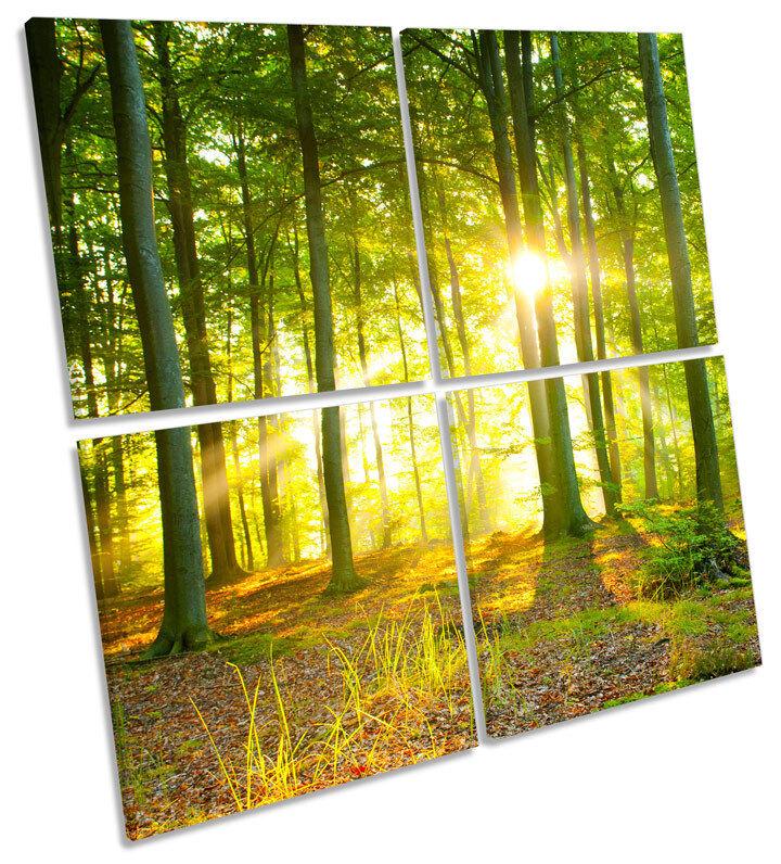 La puesta luz del sol puesta La de sol árboles forestales Arte de la pared de la lona Multi Plaza de impresión 0e7f5a