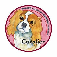 Mad Mags Car Magnet CAVALIER KING CHARLES SPANIEL dog NEW
