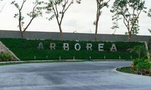 LOTES RESIDENCIALES ARBOREA