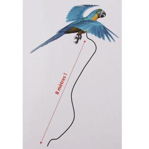 Pettorina-Per-Uccelli-Regolabile-Per-Guinzaglio-Pappagallo-6pcs-Per-Uccelli