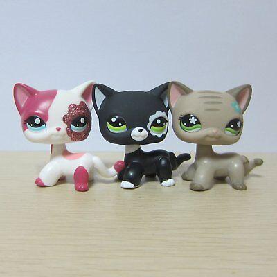 5Pcs Littlest Pet Shop LPS Toys #886 #468 #933 #2291 #2249 Short Hair Cat Gifts