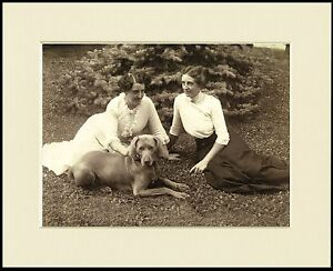 WEIMARANER-EDWARDIAN-LADIES-AND-DOG-GREAT-PHOTO-PRINT-MOUNTED-READY-TO-FRAME