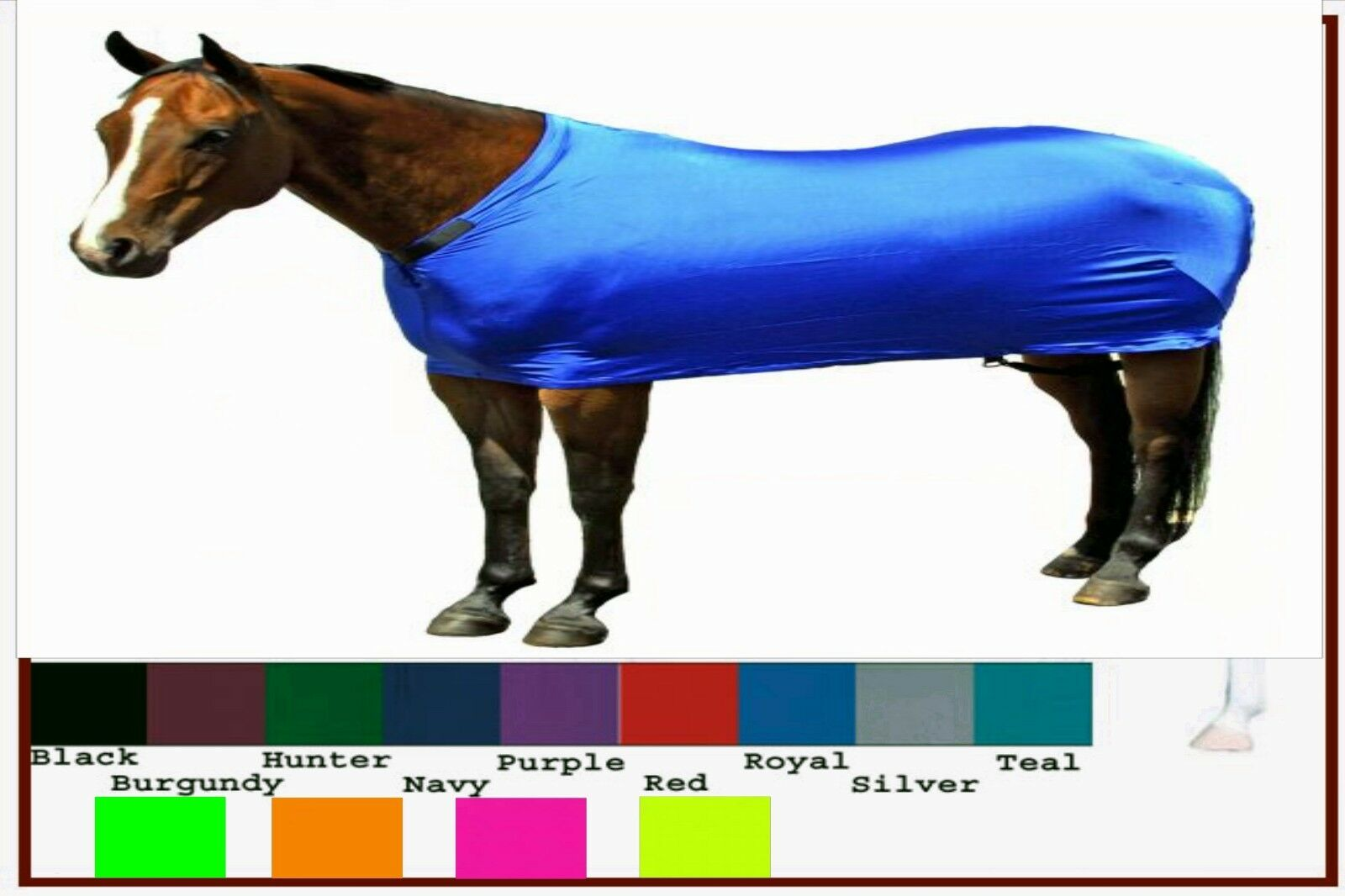 Horse  Draft Foal Cob Sleazy Sleepwear Lycra Spandex Body Show Sheet Keep'm Clean  sell like hot cakes