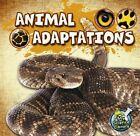 Animal Adaptations 9781617419355 by Julie K Lundgren Paperback
