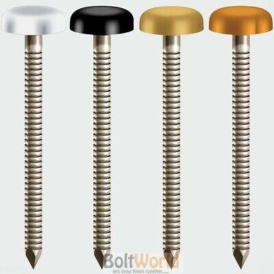 MAHOGANY UPVC FASCIA SOFFIT PLASTIC HEADED TOP STEEL NAILS PINS  PLASTOP