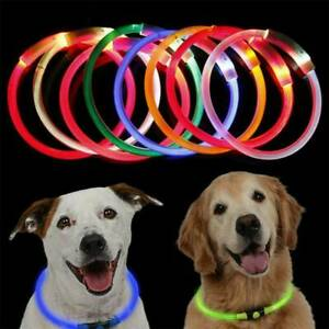 LED-USB-Rechargeable-Pet-Dog-Collar-LED-Flashing-Light-Up-Safety-Waterproof