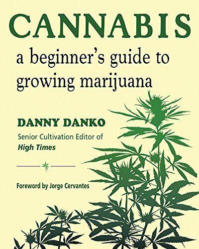 Сервантес конопля трип о марихуаны