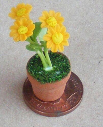 1:12 escala 4 Amarillo Margaritas /& Pot tumdee Casa De Muñecas Accesorio de jardín de flores D4