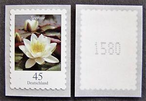 BRD-MiNr-3376-Dauerserie-Blumen-Seerose-selbstklebend-postfrisch-mit-Nr