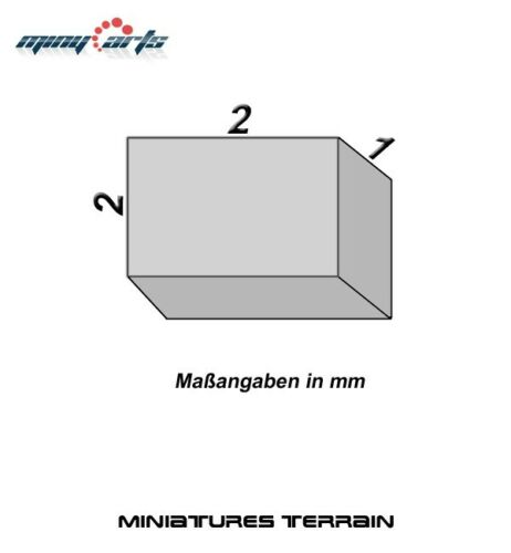 10 Neodym Magnete quadratisch 2 x 2 x 1 mm Super für Modellbau Mini Permanentmag