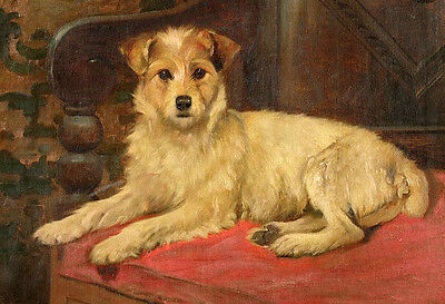 Dream-art Oil painting cute dog sitting on sofa hand painted in oil on canvas