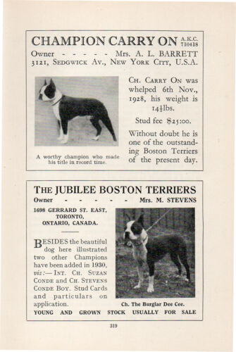 BOSTON TERRIER OLD VINTAGE 1934 NAMED DOG PRINT PAGE