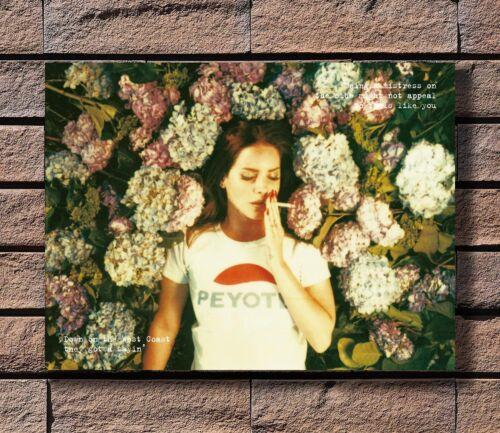 ZA172 Lana Del Rey Music Star Poster Hot 40x27 36x24 18inch