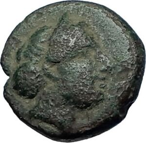 Kersebleptes-359BC-King-of-Thrace-RARE-Authentic-Ancient-Greek-Coin-Vase-i68119