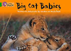 Collins Big Cat: Big Cat Babies: Band 05/Green by Jonathan Scott, Angela Scott (Paperback, 2012)