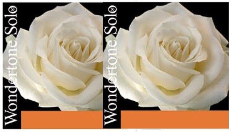 Pirastro wondertone solo Violín, 2 completa los los los conjuntos de nuevos 4 4 e37010