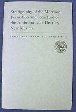 USGS AMBROSIA LAKE URANIUM District: MORRISON FORMATION, GRANTS, NEW MEXICO 1970