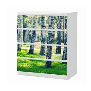 Set Mobelaufkleber Fur Ikea Kommode Malm 4 Facher Birke Wald Baum