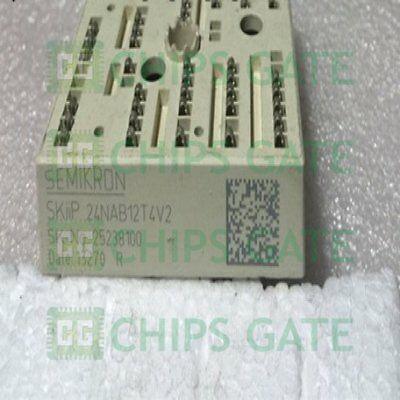 SKIIP28ANB16V1 Semiconductor Semikron Module Electronic Component