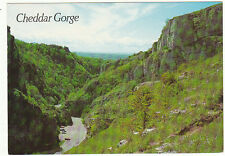 Unused  Postcard Somerset, Cheddar Gorge