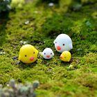 Miniature Figurine Moss Plant Pot Garden Landscape Ornaments Decor DIY 4pcs/lot