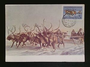 Ingenious Russia Mk 1963 Tiere Wild Rentiere Deer Maximumkarte Maximum Card Mc Cm C8273 Topical Stamps