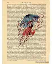 Jellyfish Art Print on Antique Book Page Vintage Illustration Discomedusae 4
