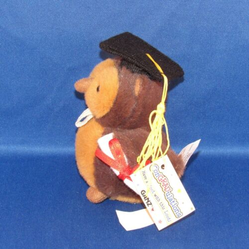 Graduation Money Holder Have a Hoot with This Loot! Ganz Plush Owl NEW