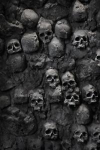Skulls-in-Wall-Spooky-Photo-Art-Print-Poster-24x36-inch