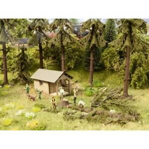 Lavori-forestali-noch-0012046-h0