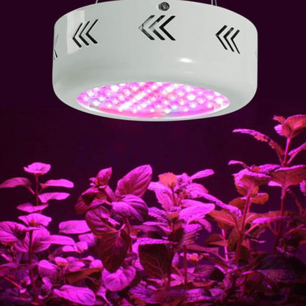 150W~1200W LED Grow Light Full Spectrum Lamp Panel for Hydroponics Indoor Plants