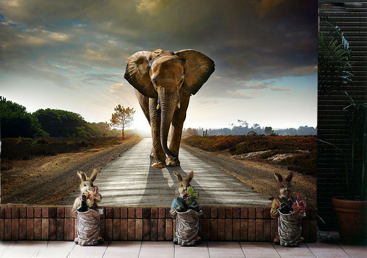 3D Elephant Road Sky 55 Wall Paper Wall Print Decal Wall Deco Indoor Mural Lemon